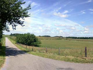 Hoge Berggebied Texel
